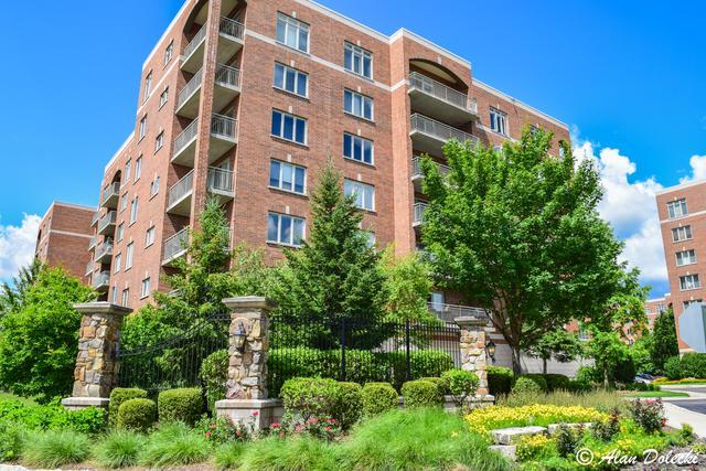 390 S Western Avenue #312, Des Plaines, IL 60016 (MLS #09760112) :: Helen Oliveri Real Estate