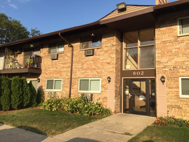 802 E Old Willow Road 2-216, Prospect Heights, IL 60070 (MLS #09765881) :: The Schwabe Group