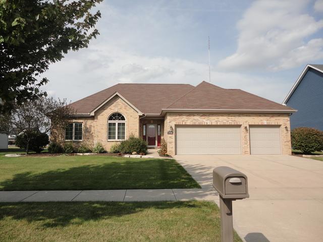 27308 Deer Hollow Lane, Channahon, IL 60410 (MLS #09767095) :: The Dena Furlow Team - Keller Williams Realty