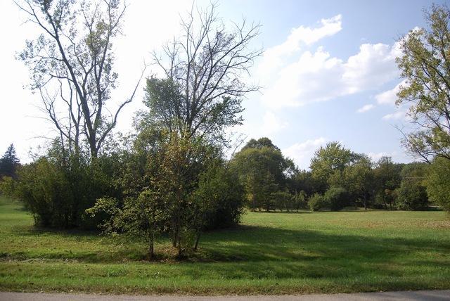 108 S Deerpath Road, Deer Park, IL 60010 (MLS #09768549) :: The Jacobs Group