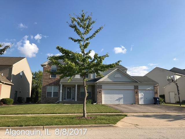 3 Marigold Lane, Algonquin, IL 60102 (MLS #09770201) :: Lewke Partners