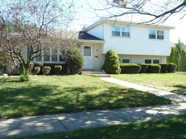 8781 S 80th Court, Hickory Hills, IL 60457 (MLS #09773235) :: The Wexler Group at Keller Williams Preferred Realty