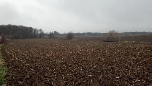 Lot 1 Corron Road, Plato Center, IL 60124 (MLS #09774517) :: Lewke Partners
