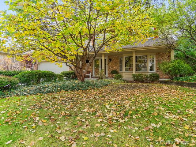 153 Carriage Way Drive, Burr Ridge, IL 60527 (MLS #09775278) :: The Wexler Group at Keller Williams Preferred Realty