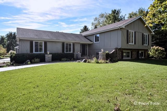 7319 Meadowshire Lane, Crystal Lake, IL 60012 (MLS #09775492) :: The Jacobs Group