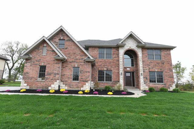 22682 Nature Creek Circle, Frankfort, IL 60423 (MLS #09777431) :: The Wexler Group at Keller Williams Preferred Realty