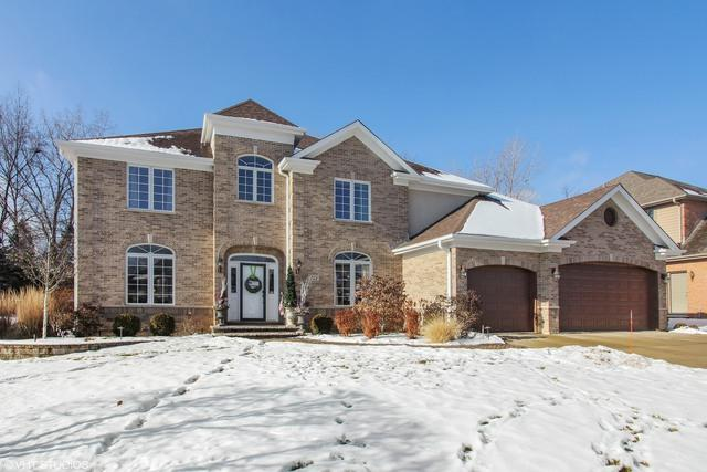 288 N Melanie Court, Palatine, IL 60067 (MLS #09777782) :: The Jacobs Group