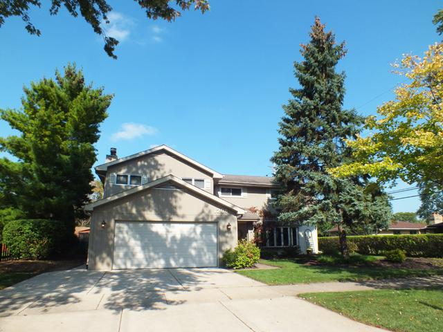 1208 Alderman Avenue, Prospect Heights, IL 60070 (MLS #09777865) :: The Schwabe Group