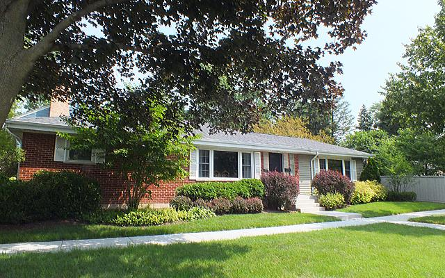 325 S George Street, Mount Prospect, IL 60056 (MLS #09778044) :: The Schwabe Group