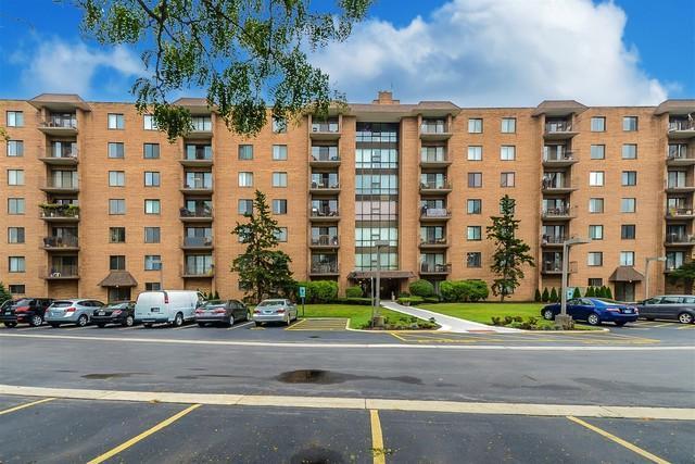 1727 W Crystal Lane #707, Mount Prospect, IL 60056 (MLS #09778077) :: The Schwabe Group