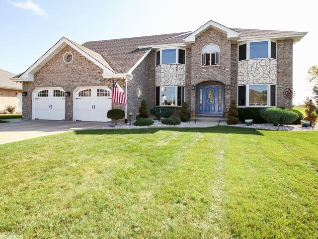 17825 Cloverview Drive, Tinley Park, IL 60477 (MLS #09778078) :: Baz Realty Network | Keller Williams Preferred Realty