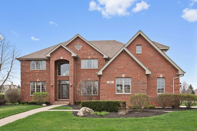 21310 Foxtail Drive, Mokena, IL 60448 (MLS #09778168) :: The Wexler Group at Keller Williams Preferred Realty