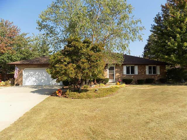 23548 W Rueben Street, Plainfield, IL 60586 (MLS #09778201) :: Angie Faron with RE/MAX Ultimate Professionals