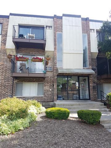 1455 Winslowe Drive #204, Palatine, IL 60074 (MLS #09778599) :: The Schwabe Group