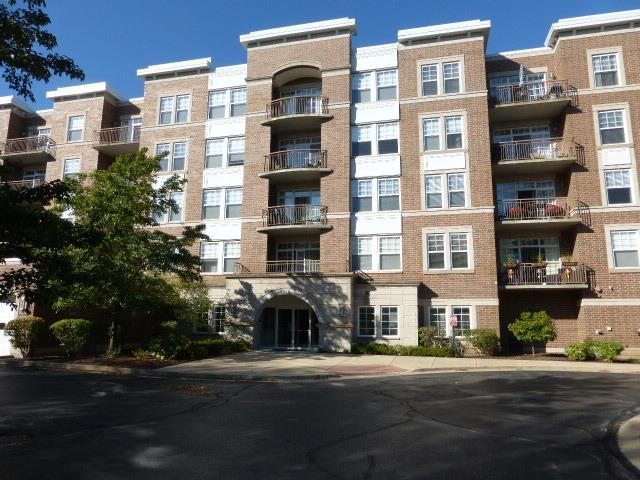 455 W Wood Street #402, Palatine, IL 60067 (MLS #09778628) :: The Schwabe Group