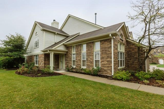 87 Willow Parkway 70-1, Buffalo Grove, IL 60089 (MLS #09778681) :: The Schwabe Group