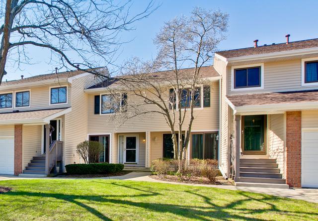 205 Winding Oak Lane #205, Buffalo Grove, IL 60089 (MLS #09778754) :: The Schwabe Group