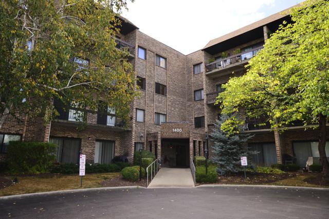 1400 N Elmhurst Road #416, Mount Prospect, IL 60056 (MLS #09778812) :: The Schwabe Group