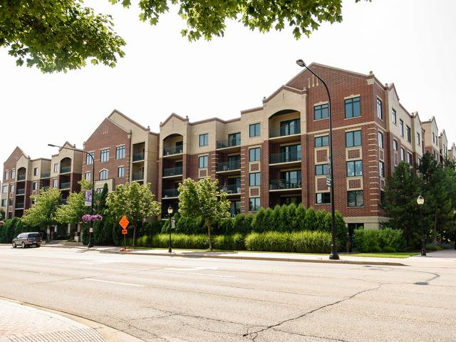 5 W Central Road #101, Mount Prospect, IL 60056 (MLS #09778858) :: The Schwabe Group