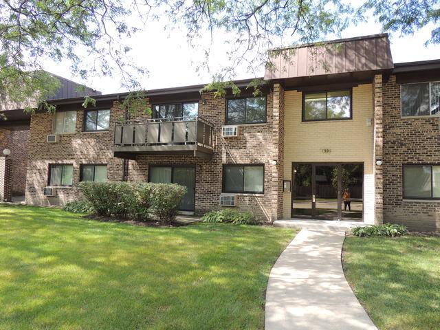 2636 N Windsor Drive #201, Arlington Heights, IL 60004 (MLS #09779134) :: The Schwabe Group
