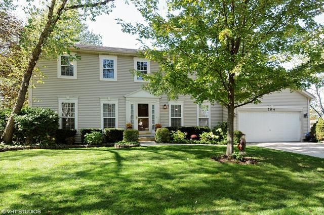 704 Muirhead Court, Naperville, IL 60565 (MLS #09781125) :: The Wexler Group at Keller Williams Preferred Realty
