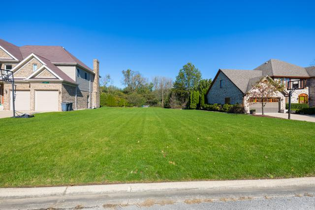 10813 Chaucer Drive, Willow Springs, IL 60480 (MLS #09781163) :: The Wexler Group at Keller Williams Preferred Realty