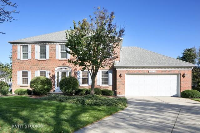 1025 Stanton Drive, Naperville, IL 60540 (MLS #09781294) :: The Wexler Group at Keller Williams Preferred Realty