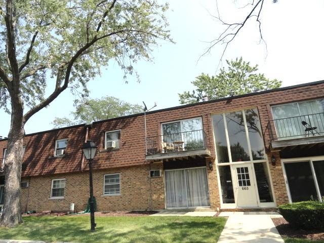 665 Grove Drive #211, Buffalo Grove, IL 60089 (MLS #09781542) :: The Schwabe Group