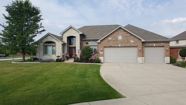 22534 Oakfield Drive, Frankfort, IL 60423 (MLS #09781704) :: The Wexler Group at Keller Williams Preferred Realty