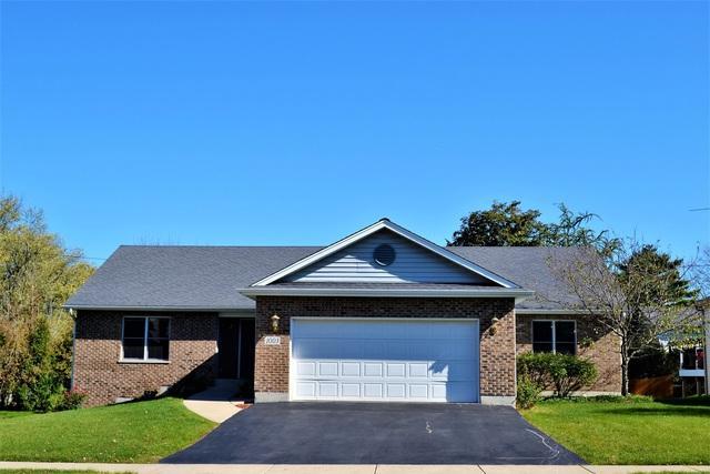 1003 Gerry Street, Woodstock, IL 60098 (MLS #09781780) :: Lewke Partners