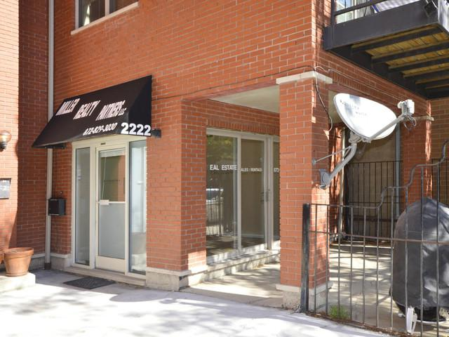 2222 Armitage Avenue 1E, Chicago, IL 60647 (MLS #09783013) :: Property Consultants Realty