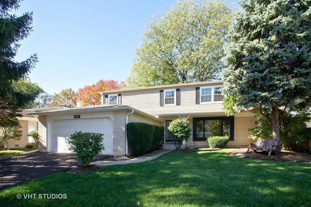 1406 N Chestnut Avenue, Arlington Heights, IL 60004 (MLS #09783315) :: The Jacobs Group