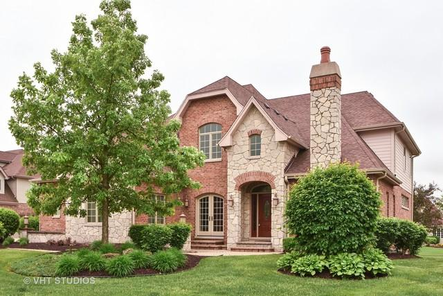 22440 Cobblestone Trail, Frankfort, IL 60423 (MLS #09783706) :: The Jacobs Group