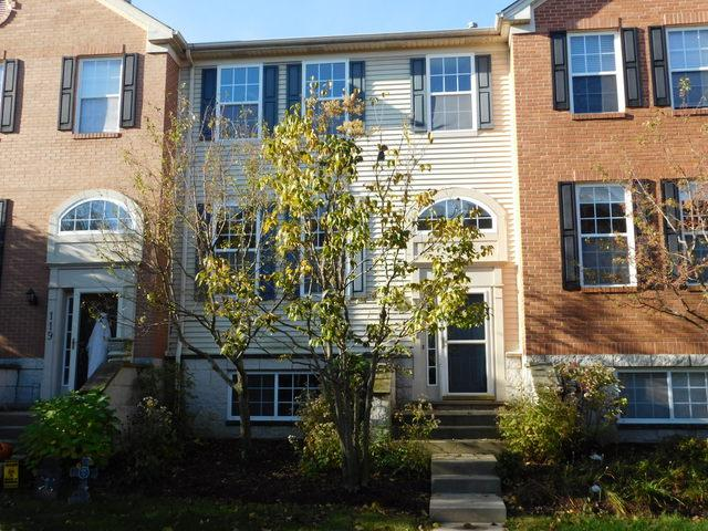 117 Patrick Avenue #2102, Willow Springs, IL 60480 (MLS #09786318) :: The Wexler Group at Keller Williams Preferred Realty