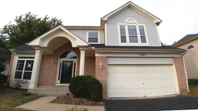 1087 Camellia Place, Fox River Grove, IL 60021 (MLS #09787282) :: Lewke Partners