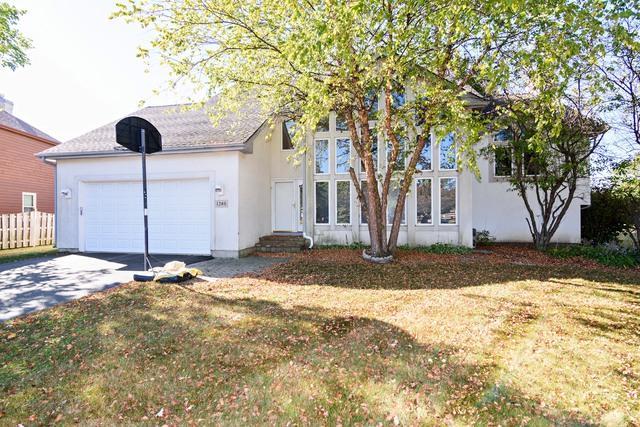 1240 N Jack Pine Court, Palatine, IL 60067 (MLS #09790455) :: Baz Realty Network | Keller Williams Preferred Realty