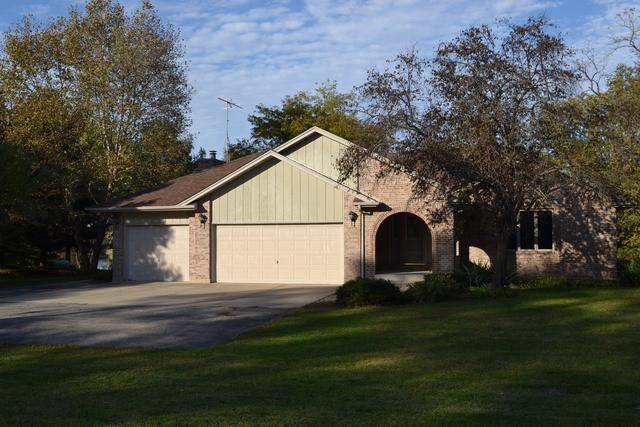 19646 W Rt 113, Custer Park, IL 60481 (MLS #09790899) :: The Dena Furlow Team - Keller Williams Realty
