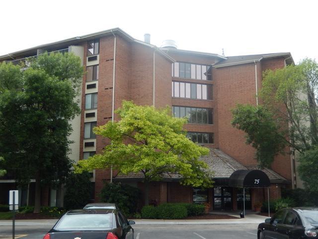 75 Kristin Circle #606, Schaumburg, IL 60195 (MLS #09794082) :: Domain Realty