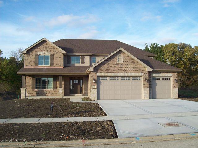 12510 Alpine Ridge Drive, Mokena, IL 60448 (MLS #09796929) :: The Wexler Group at Keller Williams Preferred Realty