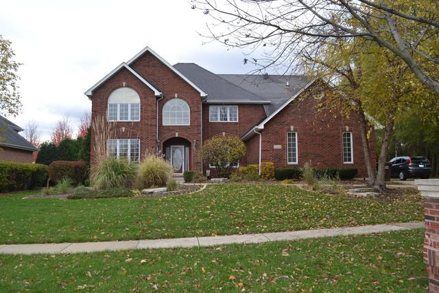 20922 S Tail Feathers Drive, Mokena, IL 60448 (MLS #09797159) :: The Wexler Group at Keller Williams Preferred Realty
