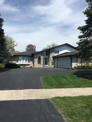10126 S Westport Drive, Palos Park, IL 60464 (MLS #09798708) :: The Wexler Group at Keller Williams Preferred Realty