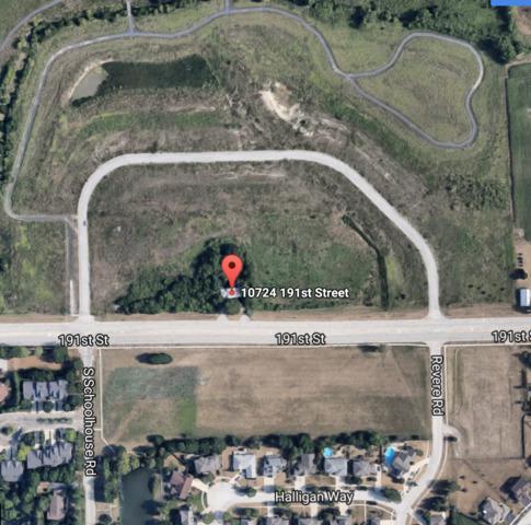 10724 191st Street, Mokena, IL 60448 (MLS #09798822) :: The Wexler Group at Keller Williams Preferred Realty