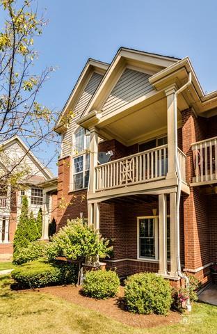 206 Callie Court, Morton Grove, IL 60053 (MLS #09799915) :: The Jacobs Group