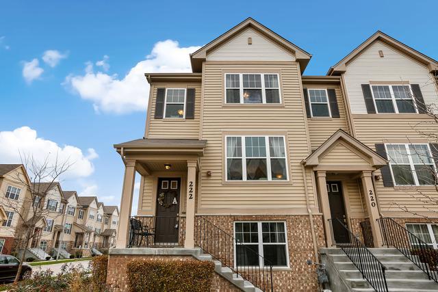 222 Wildflower Street, Des Plaines, IL 60016 (MLS #09802176) :: Helen Oliveri Real Estate