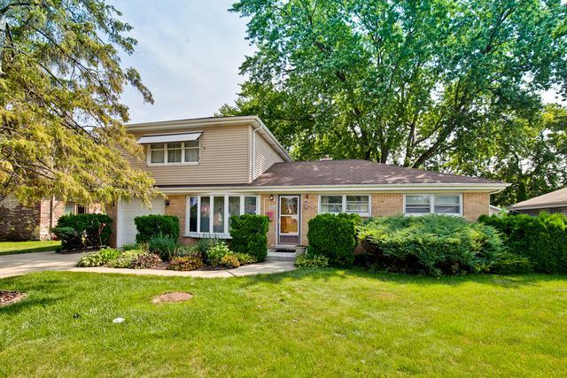 717 N Pine Street, Mount Prospect, IL 60056 (MLS #09802871) :: Carrington Real Estate Services