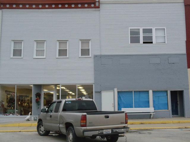 121 Hack Street, Cullom, IL 60929 (MLS #09802939) :: Domain Realty