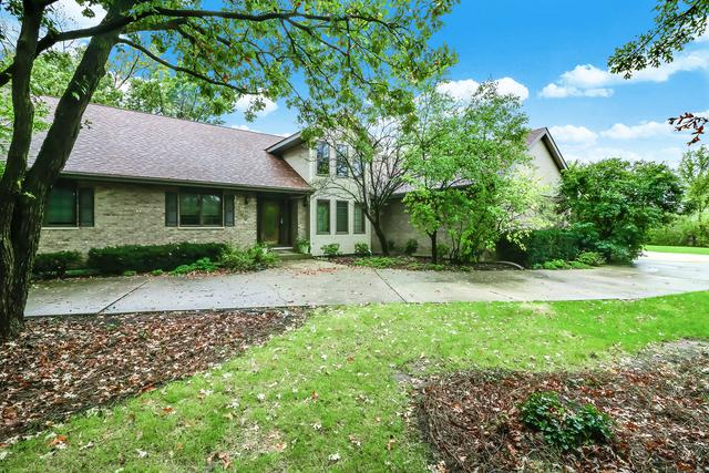 12300 S Wolf Road, Palos Park, IL 60464 (MLS #09803233) :: The Wexler Group at Keller Williams Preferred Realty