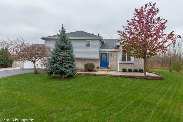 1298 Revere Court, New Lenox, IL 60451 (MLS #09803265) :: The Wexler Group at Keller Williams Preferred Realty