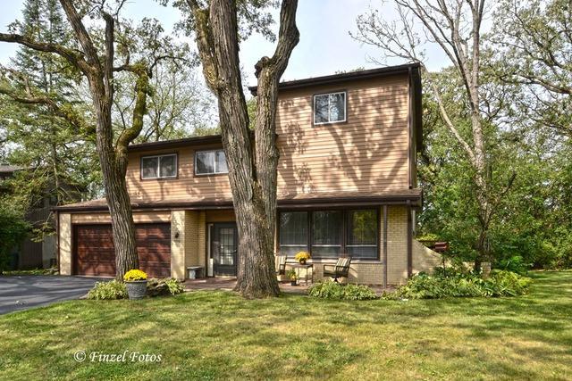 503 Spruce Court, Schaumburg, IL 60193 (MLS #09803407) :: Carrington Real Estate Services