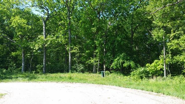 Lot 12 Autumn Ridge Drive, Crystal Lake, IL 60014 (MLS #09803421) :: Key Realty